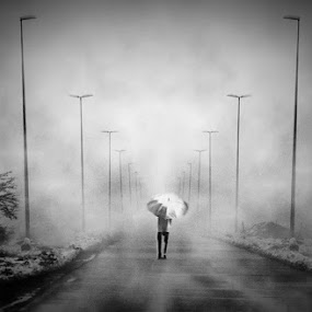 . by Boricic Goran - City,  Street & Park  Street Scenes ( zine )