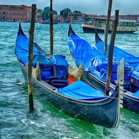 Gondolas by Ana Paula Filipe - City,  Street & Park  Street Scenes ( water, gondola, blue, transportation, veneza )