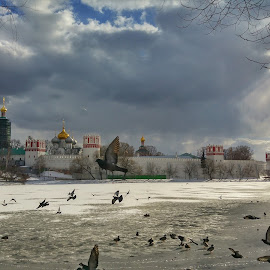 by Istvan File - Instagram & Mobile Android ( ortodox, winter, russia, church, convent, moscow, novodevichy, lake, frozen )