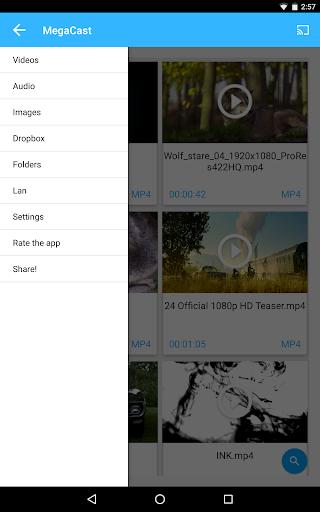 MegaCast Pro - screenshot