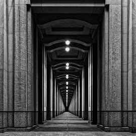 Pillar Pathway by Dan Gomer - Buildings & Architecture Architectural Detail ( west michigan, indiana, monochrome, indianapolis, dan gomer, architecture, coolpix p7700, nikon )