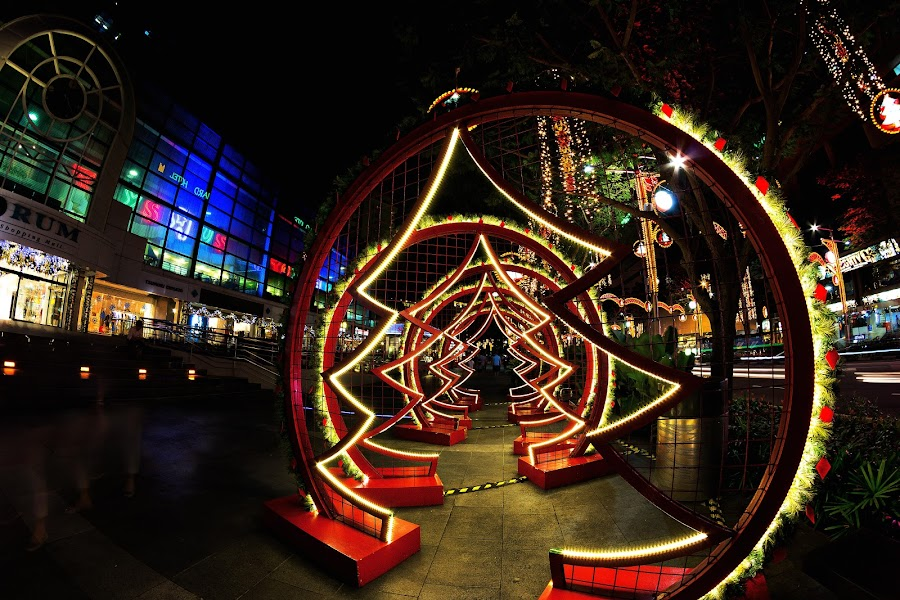 3-Dimensions Xmas Tree by Lye Danny - City,  Street & Park  Street Scenes