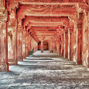 Columns in the afternoon light, Fatehpur Sikri  by Savio Joanes - Buildings & Architecture Other Exteriors ( coloumns, afternoon, fatehpur, light, sun )