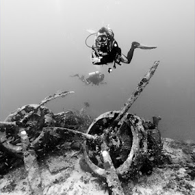 Wreckdiving by Rico Besserdich - Sports & Fitness Watersports ( diver, savoia-marchetti, kas, underwater, airplane, scuba, turkey, rico besserdich, sparviero, diving )