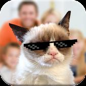 Free Download Cat Photobomb Photo Maker APK for Samsung