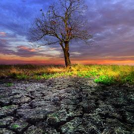 by Hanan Maulana - Landscapes Weather