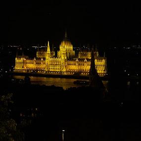 Parliament by Jakub Juszyński - Buildings & Architecture Public & Historical ( hungary, parliament, budapest, iluminated, pest, night, castle, view, buda, light )