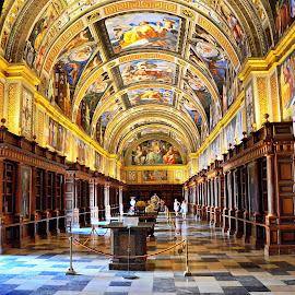 The library of El Escorial by Francis Xavier Camilleri - Buildings & Architecture Public & Historical