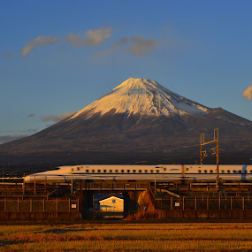 Mount Fuji and Shinkansen by Kamal Kamaludin - Landscapes Mountains & Hills ( reflection, mountain, fujiyama, peak, travel, yellow, landscape, run, iron, asian, over, sky, japan, nature, shinkansen, snow, asia, fuji, fujiyoshida, light, branches, sightseeing, site, water, park, mt, green, majestic, beautiful, white, bloom, lake, scenic, kawagushi, japanese, up, winter, san, mount, railway, blue, outdoors, bridge, scenery, springtime, river )