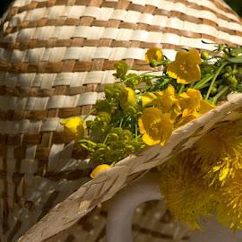 by Helena Jirasová - Uncategorized All Uncategorized ( zátiší s květinami )