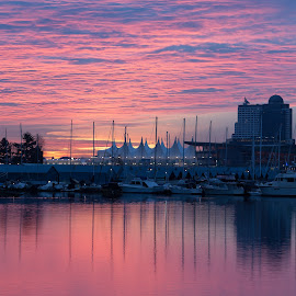 Vancouver Sunrise by Rainer Willeke - City,  Street & Park  Skylines ( harbor, canada, harbour, reflections, pink, sunrise, marina, cityscape, vancouver, bc )
