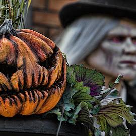Evil Pumpkin by Carl Chalupa - Public Holidays Halloween ( pumpkin, halloween,  )