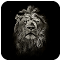Lion King CM Locker Theme APK for Bluestacks