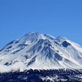 In Winter Sleeps Mount Shasta by Steven Calhoun - Landscapes Mountains & Hills ( shasta, volcano, snow, mount shasta, landscapes )