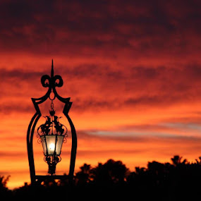 Lamp Post by Kathleen Waterman - Landscapes Starscapes