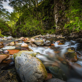 Water stream. by Haim Rosenfeld - Landscapes Forests ( exposure, scotland, stream, europe, mountain, colorful, land, stone, rock, yellow, travel, north, landscape, long, of, adventure, kingdom, shadow, light, lonely, foreground, water, orange, united, uk, celtic, texture, green, colors, scottish, image, brawn, scenic, highlands, photo, cascade, outdoor, brown, scenery, stunning, river, britain )