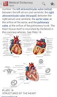 Screenshot of Dorland's Illustrated Medical