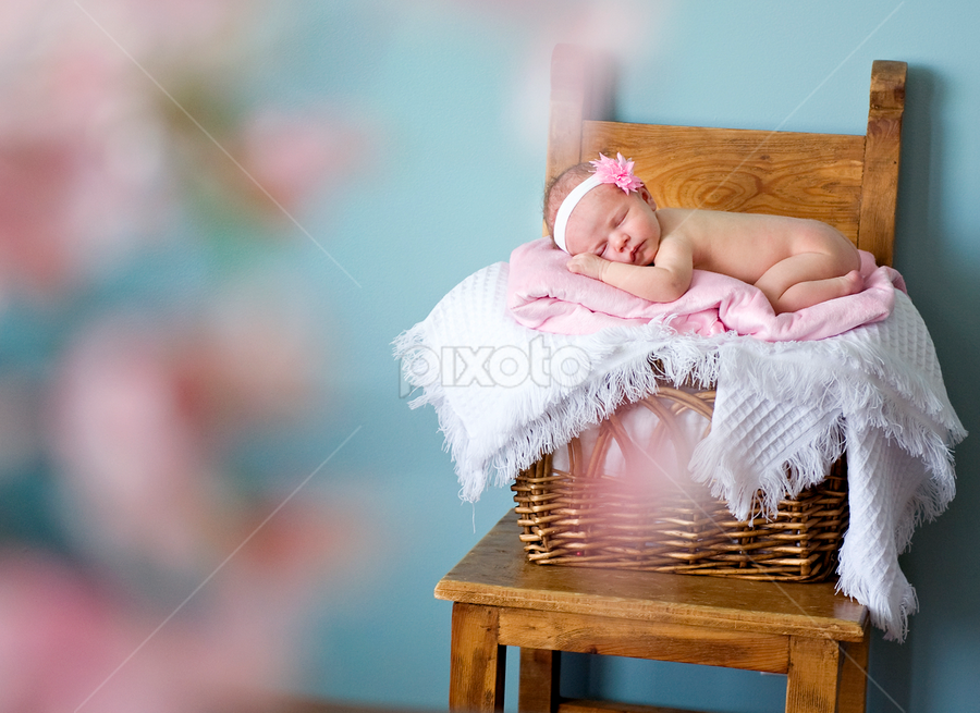 Baby Layla by Melissa Papaj - Babies & Children Children Candids ( child, babies, girl, female, infant, pink, baby, newborn )