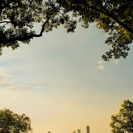 Knoop Park Sunrise by Joel Thompson - City,  Street & Park  Neighborhoods ( skyline, knoop park, little rock, park, color, yellow, sunrise, landscape, photo, light, downtown, arkansas )