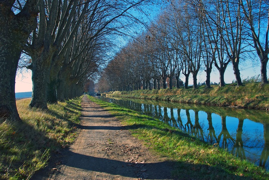 The Canal du Midi, France by Paul Atkinson - Landscapes Travel ( water, du, europe, canal, midi, winter, sky, tree, blue, south, france, west, river )