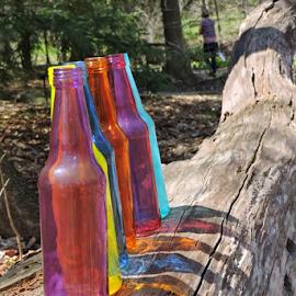 Bottle-log by Melissa Davis - Artistic Objects Glass ( kirtland ohio, arboretum, bottles, colored bottles, bottle art )