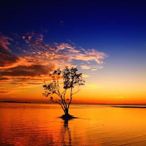 Hening Tapi Bukan Berarti Gersang by Moh Maulana Lana - Landscapes Waterscapes