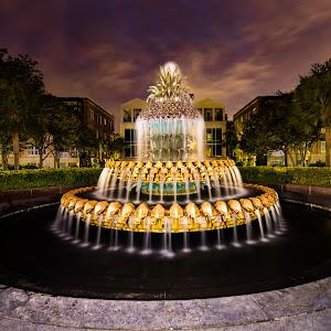 charleston-pineapple-fountain (1 of 1).jpg