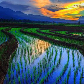 by Rahmad Himawan - Landscapes Sunsets & Sunrises
