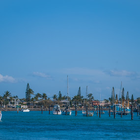 Yacht returning home by Mark Luyt - Transportation Boats ( yacht, harbour, sailing, clear day, sea,  )