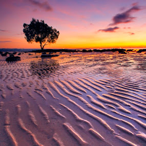 Masih Surut by Aris Winahyu BR - Landscapes Waterscapes ( waterscape, sunset, low tide, beach )
