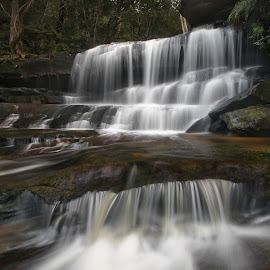 Water Falling by Geoffrey Wols - Landscapes Waterscapes ( water, somersby falls, australia, waterfall, bush, trees, forest, central coast, rocks )