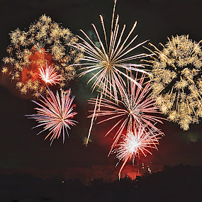 4th Celebration by Jerry Ehlers - Public Holidays July 4th ( fireworks, july 4th, independence day, lake tenkiller )