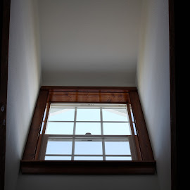 Vivid Window by Samuel Speights - Buildings & Architecture Homes