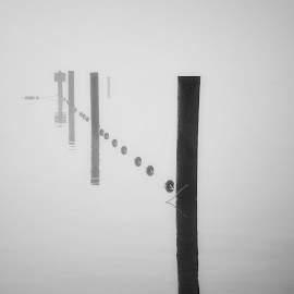 Lake Stevens  by Todd Reynolds - Black & White Objects & Still Life