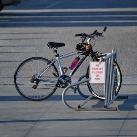 No Bicycles by Barry Lehman - Transportation Bicycles ( signs, bike, biking, alabama, bicycle )