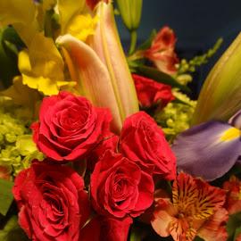 by Pal Mori - Flowers Flower Arangements