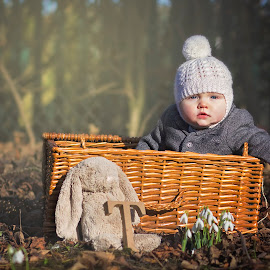 by Melissa Marie Gomersall - Babies & Children Babies ( basket, beauitful, rabbit, baby, 6months, winter )