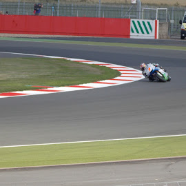 silverstone  by Angus Smith - Transportation Motorcycles ( moto gp, silverstone )