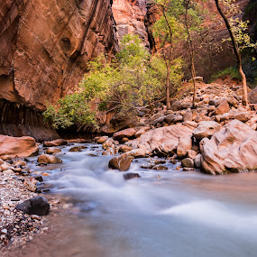 Narrows at Zion by Brent Huntley - Landscapes Waterscapes ( xt1, 3 images, narrows, canyon, travel, morning, landscape, zion, panorama, national park, southern, utah, x shooter, fall, southwest, fuji, river )