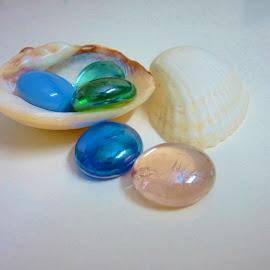 by Shreya Bansal - Novices Only Objects & Still Life ( shells, still life, white, glass, stone, objects )