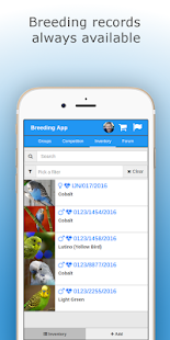 Budgie Breeding App - screenshot