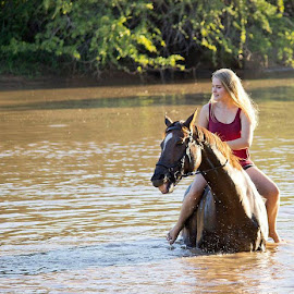 Swimming in dam by Lydia Schoeman - Animals Horses (  )
