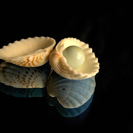A pearl is born by Prasanta Das - Artistic Objects Other Objects ( pearl, seashells )