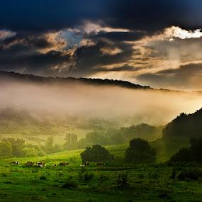Through the hills by Ionut Stoica - Landscapes Mountains & Hills ( hills, pasture, lanscape, romania, sunrise, morning )