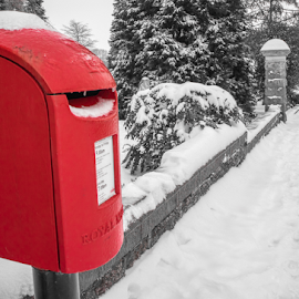 Letterbox In The Snow by Wendy Richards - City,  Street & Park  Neighborhoods ( red, letterbox, heavitree, street, snow, neighbourhood, exeter )