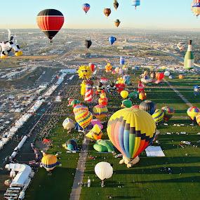 Balloon Fiesta by Ruth Sano - Transportation Other ( hot air balloon, balloon, festival, fiesta, colorful, transportation,  )