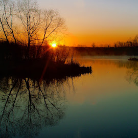 Sunrise Over the Wetlands by Robert Coffey - Landscapes Sunsets & Sunrises ( water, wetlands, silhouettes, reflections, sunrise )