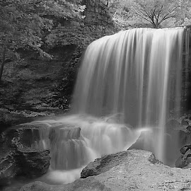 SERENITY by Dana Johnson - Black & White Landscapes ( stream, waterfalls, black and white, waterscape, cascade, falls, landscape )