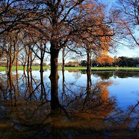 Hagley Park Flood by Tim Bennett - City,  Street & Park  City Parks