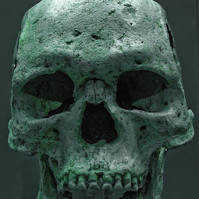 Skull by Raymon Brugman - Artistic Objects Other Objects ( skull british museum )